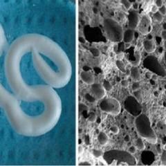 Inventan una espuma inyectable capaz de regenerar huesos