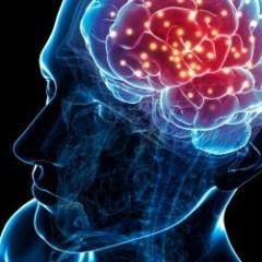 ¿Es posible Duplicar la mente?